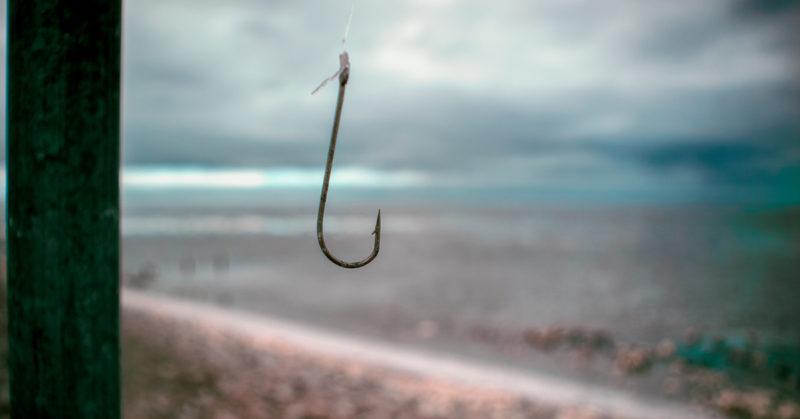 Kaloja pyydetään menetelmillä, joita ei sallittaisi muiden selkärankaisten kohdalla.