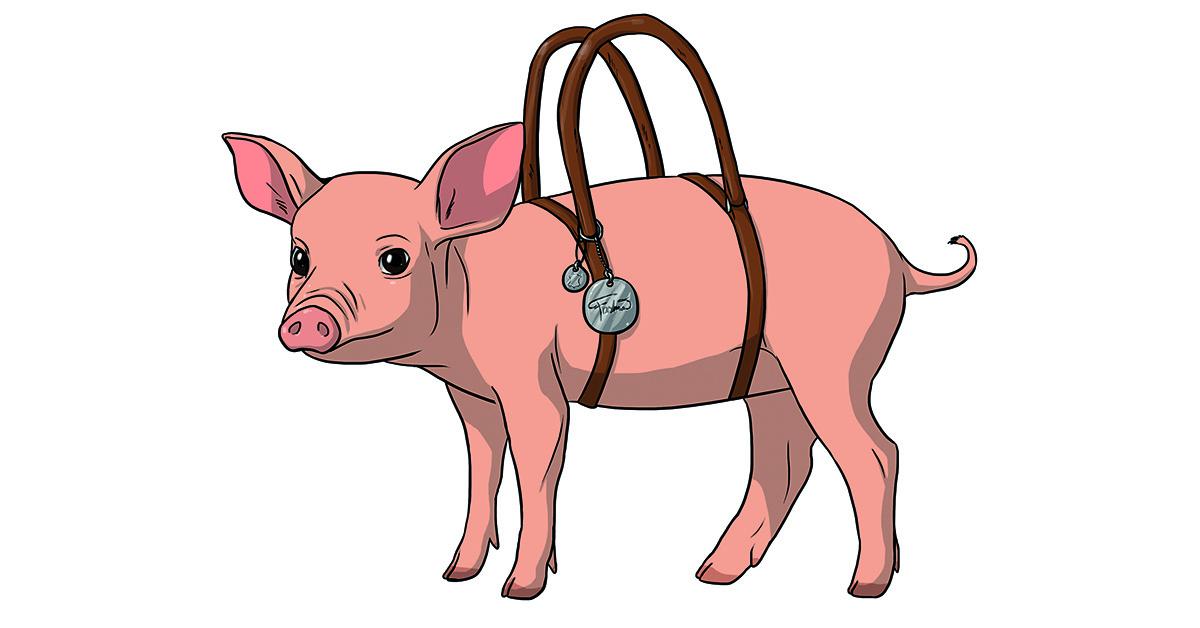Kuvituskuvassa sian ympärille on laitettu kantohihnat, kuten laukussa. Kuvitus: Karoliina Falck.