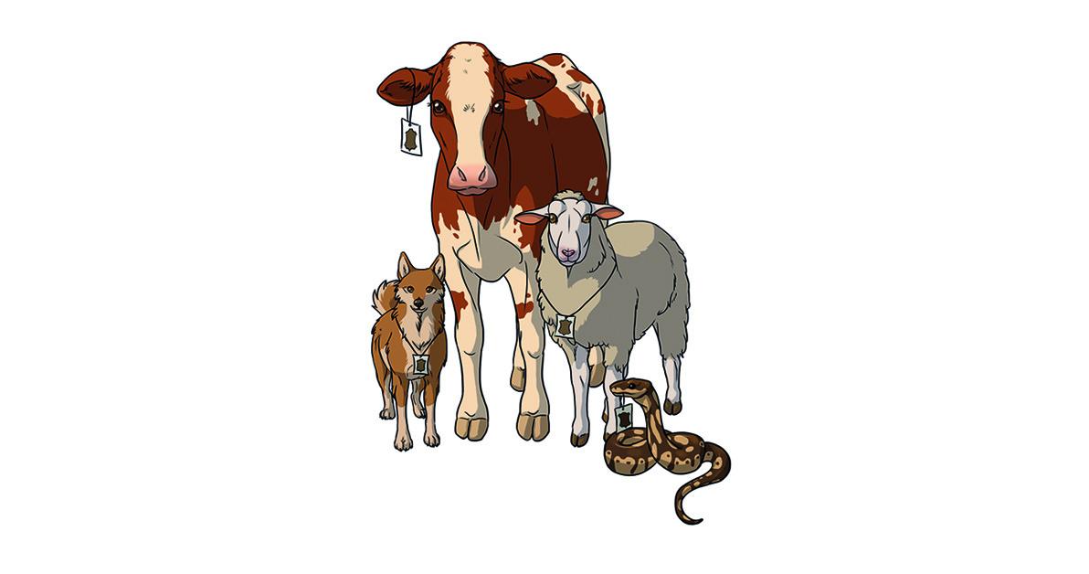 Kuvituskuvassa koiralla, naudalla, lampaalla ja käärmeellä on ympärillään hintalaput. Kuvitus: Karoliina Falck.