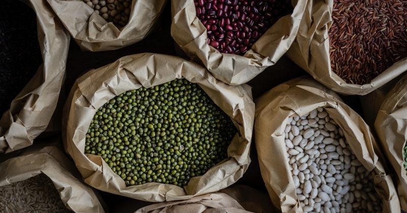 Vegaaniset kasviproteiinit testissä. Kuvassa tuoreita siemeniä ja palkokasveja.