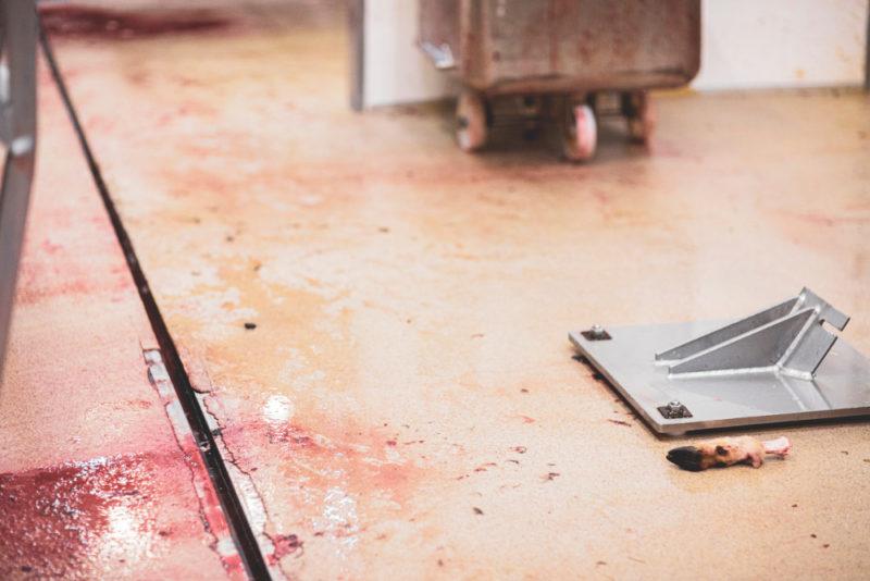 Teurastamon lattialla näkyy yksinäinen sorkka.